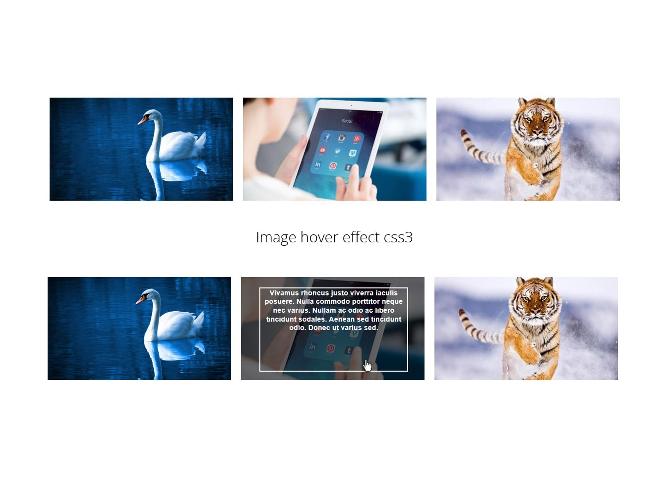 Image hover effect CSS3